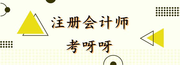 2020年江苏南京注册会计师报名条件